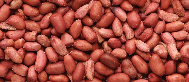 Peanut texture. Food background of red beans closeup